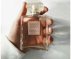 aesthetic, perfume, and tumblr image