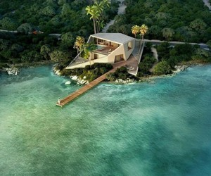 design, tropical, and goals image