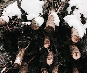 tree, snow, and christmas image
