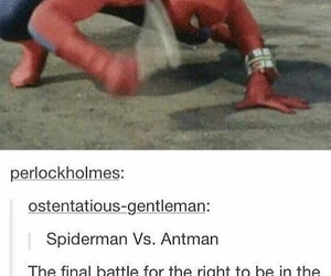 funny, spiderman, and tumblr image