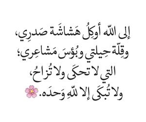 كلمات, arabic, and dz image