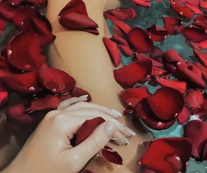 bath, red, and rose image