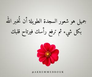 الصﻻة, عربي عرب بالعربي, and حب عشق حزن image