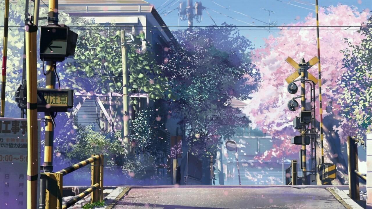 anime, japan, and sakura image
