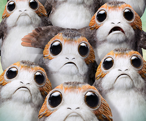 star wars, porg, and wallpaper image