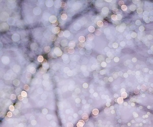 christmas lights, festive, and frost image