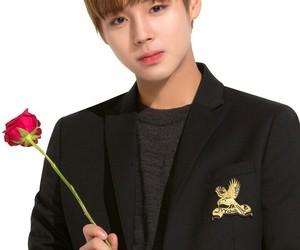 white, jihoon, and cute image