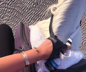 horse, horseriding, and riding image