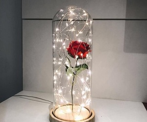light, flowers, and lamp image