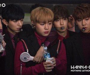 jihoon, jaehwan, and wanna one image