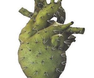 cactus and heart image