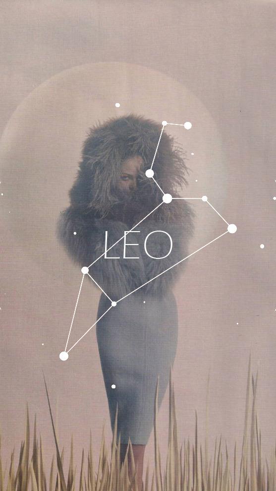Leo, wallpaper, and zodiac image