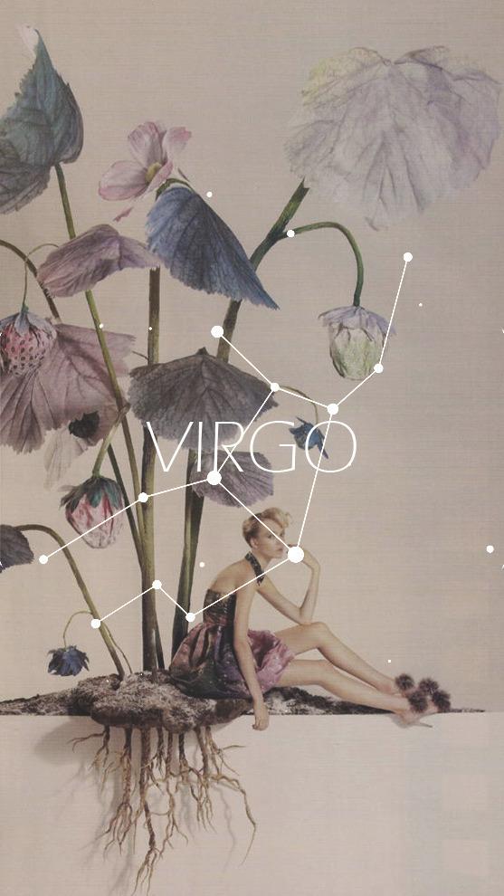 virgo, flowers, and zodiac image