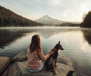 dog, freedom, and girl image