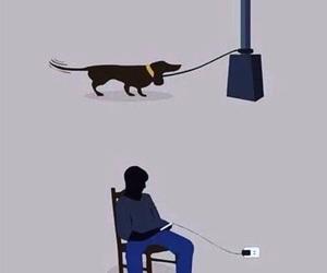 dog, phone, and true image