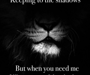 lion and quotes image