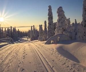 austria, christmas, and cold image