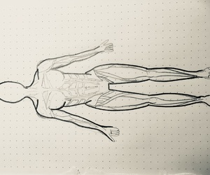 abs, art, and drawing image