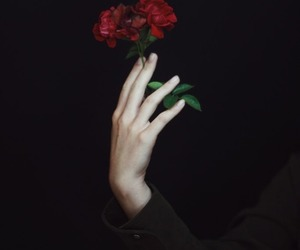 black, flower, and red image