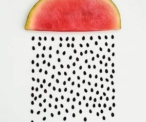 seeds and watermelon image