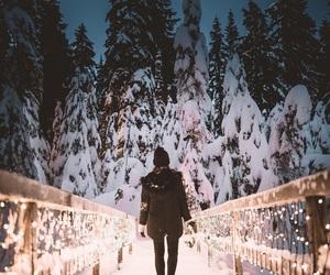 lights, winter, and snow image