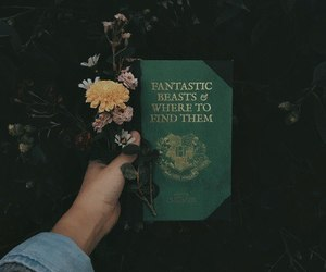 book, flowers, and harry potter image