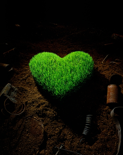 heart, grass, and green image