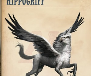 game, harry potter, and hippogriff image