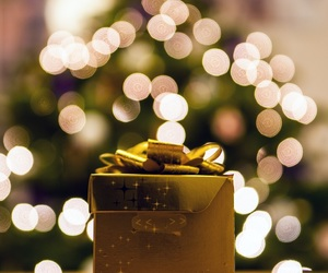 christmas, gift, and decorations image