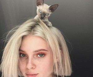 cuteness, girls, and kitten image