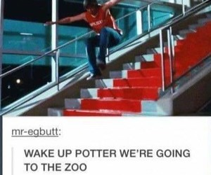 funny, harry potter, and high school musical image