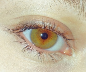 eye, green eyes, and green image