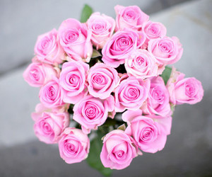 beautiful, flower, and love image