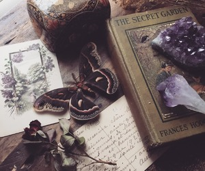 amethyst, book, and butterfly image