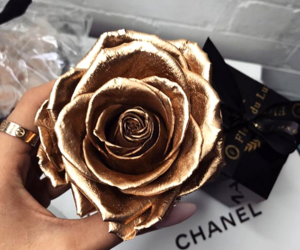flowers, aesthetic, and chanel image
