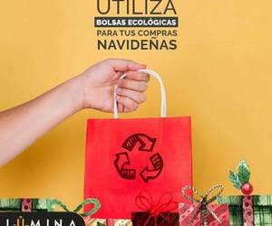 bolsas, recicla, and eco image