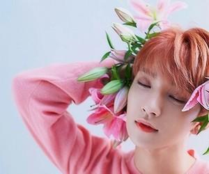 17, Seventeen, and kpop image
