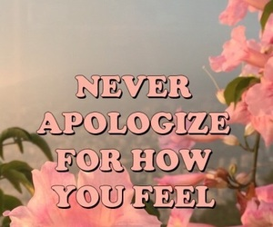 quotes, wallpaper, and apologize image