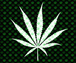 420, marijuana, and wallpaper image