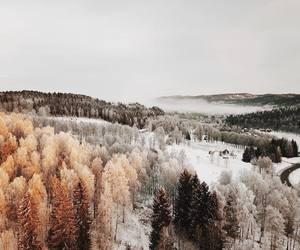 amazing, background, and beautiful image