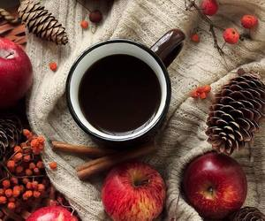 autumn, coffee, and apple image