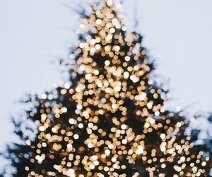 aesthetic, christmas lights, and christmas tree image