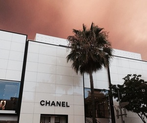 chanel, luxury, and palm trees image