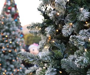 celebrate, disney, and fairy lights image