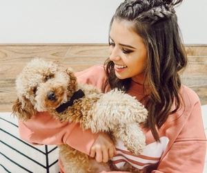 dog, jess conte, and fashion image