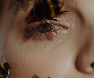 bee, beauty, and girl image