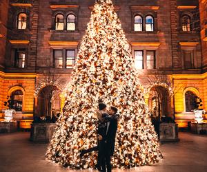 love, christmas, and christmas tree image