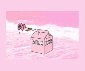 milk, pink, and carton image