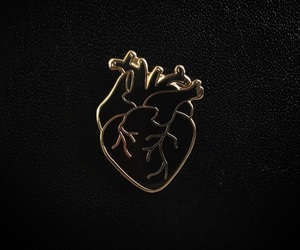 gold, heart, and black image