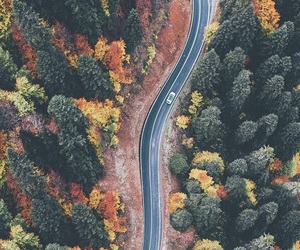adventure, explore, and fall image